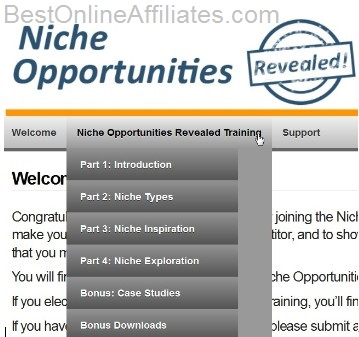 niche opportunities revealed review