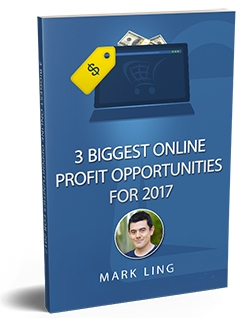 mark link book 2017