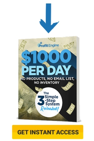 profit engine $1000 per day book