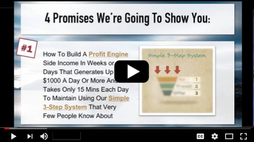 what is profit engine